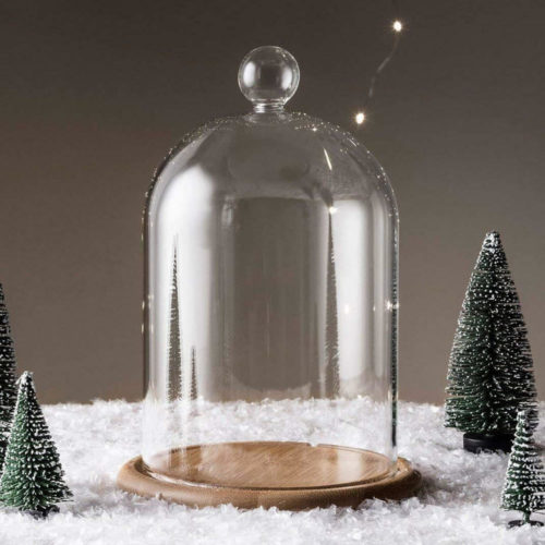 Glass Cloche Jar with Wood Base
