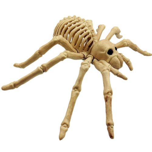 Spider Skeleton Scary Decor