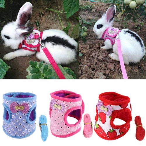 Bunny Harness and Leash Set