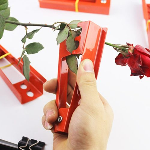 Flower Leaf Stripper and Thorn Remover