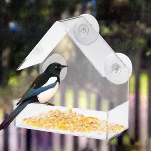 Outdoor Clear Window Bird Feeder
