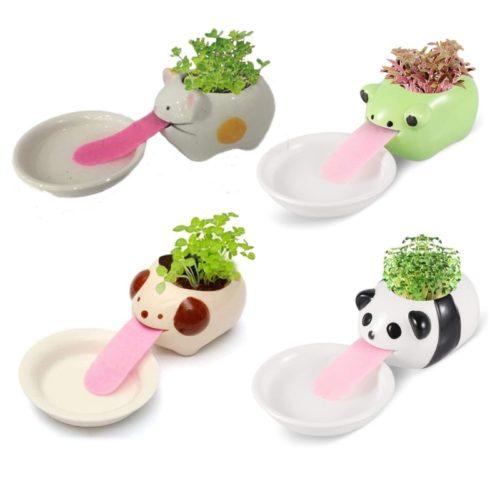 Animal Self Watering Ceramic Pot