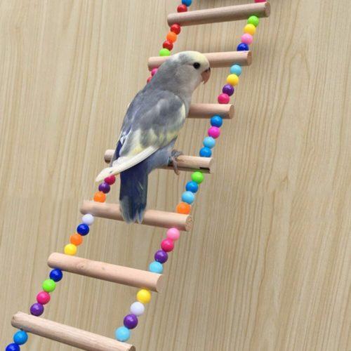 Beaded Wooden Parrot Ladder