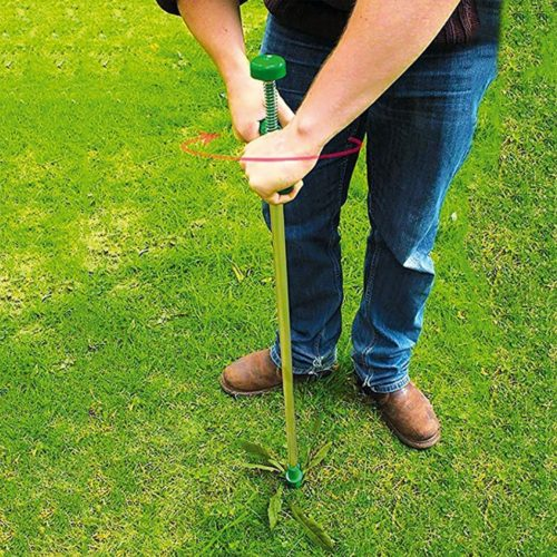 Garden Standing Plant Root Remover