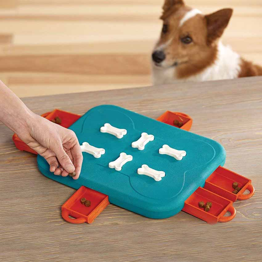 Educational Dog Toy Leaking Food Box Dog Feeder Toys Interactive Puzzle Game Pet Toys For Small Large Dog Cat Pet Puppy Supplies