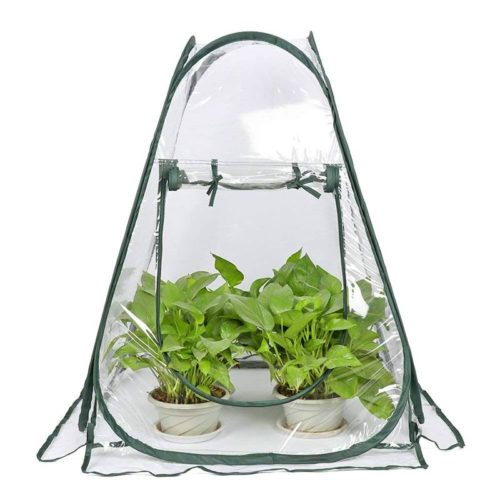 Small Pop Up Greenhouse with Nails