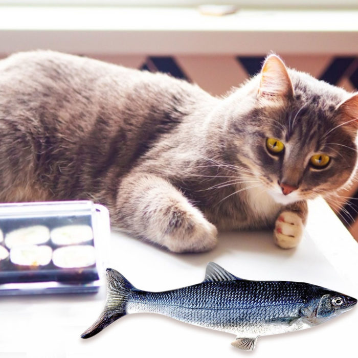Rechargeable 3D Electric Fish Cat Toy