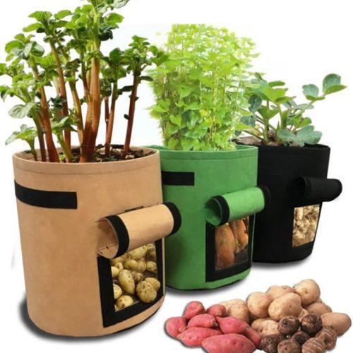 Potato Plant Bag Grow Pot