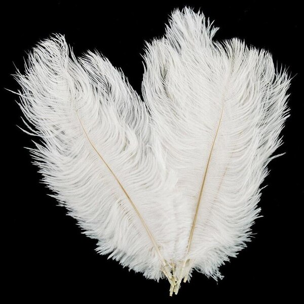10pcs Elegant Ostrich Feather White Black Red Fluffy Feather for Wedding Party Home Room DIY Decorations 15-20cm/25-30cm/30-35cm