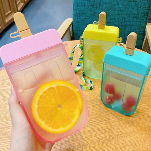 Cute Popsicle Water Bottle with Straw