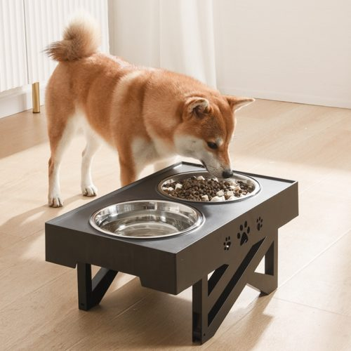 Pet Bowl with Stand Adjustable Feeder