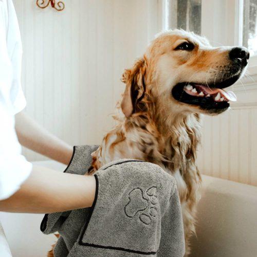 Absorbent Dog Bath Towel