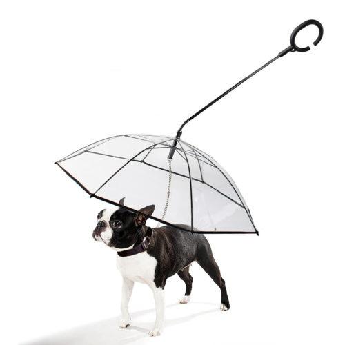 Dog Walking Umbrella Leash
