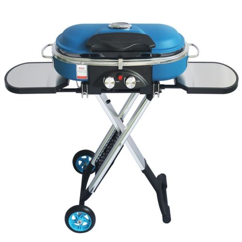 Outdoor BBQ Trolley Gas Grill