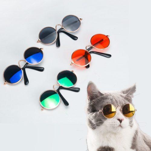 Cool Cat Sunglasses Pet Accessory