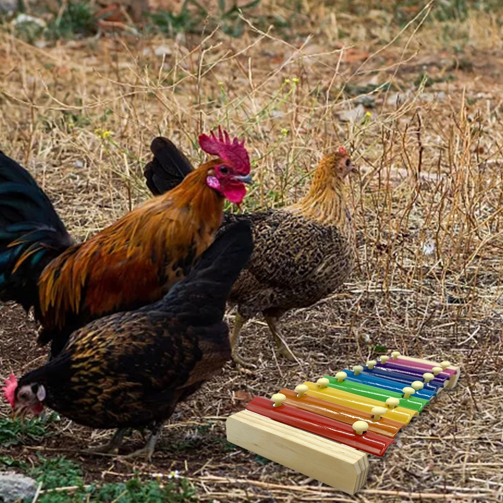 Pet Chicken Xylophone8 Keys Toy Medium And Large Parrot Toy Percussion Toy Sound Toy For Hen Chicken Coop Parrots