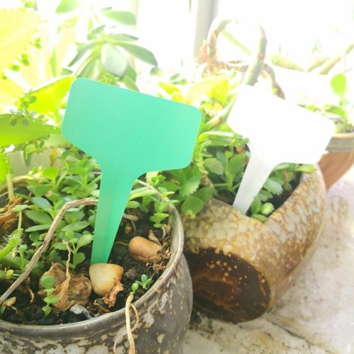 T-Type Plant Name Tags (25/50/100Pcs)