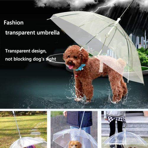 Transparent Dog Umbrella Leash