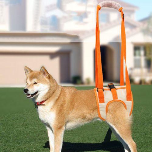 Adjustable Dog Harness for Back Legs