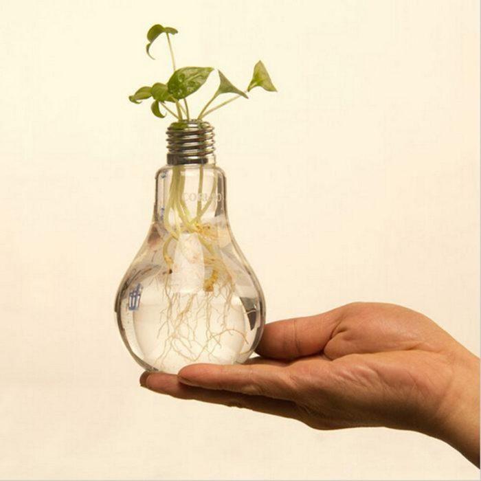 Transparent Glass Light Bulb Vase
