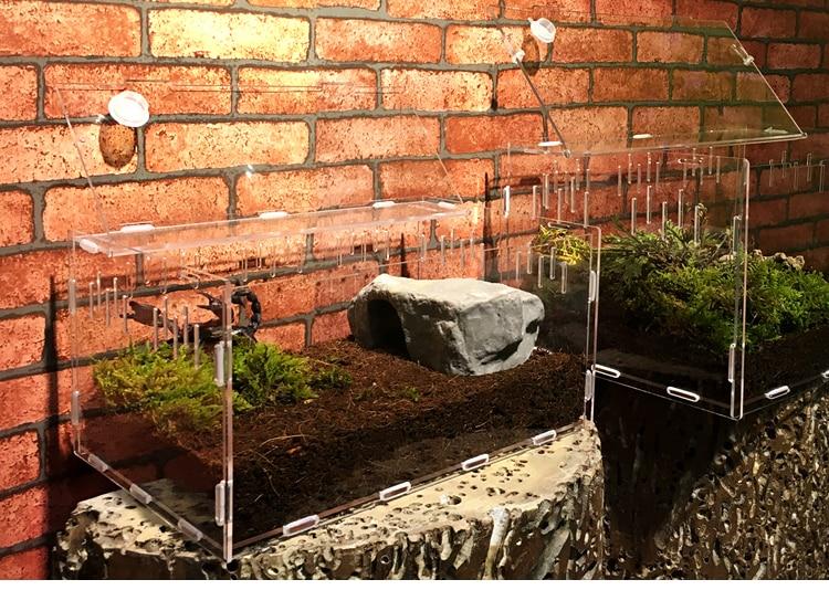 Reptile Tank Insect Spiders Tortoise Lizard Acrylic Transparent Breeding Box Vivarium Lid Reptile Pet Product Terrarium 2020 New
