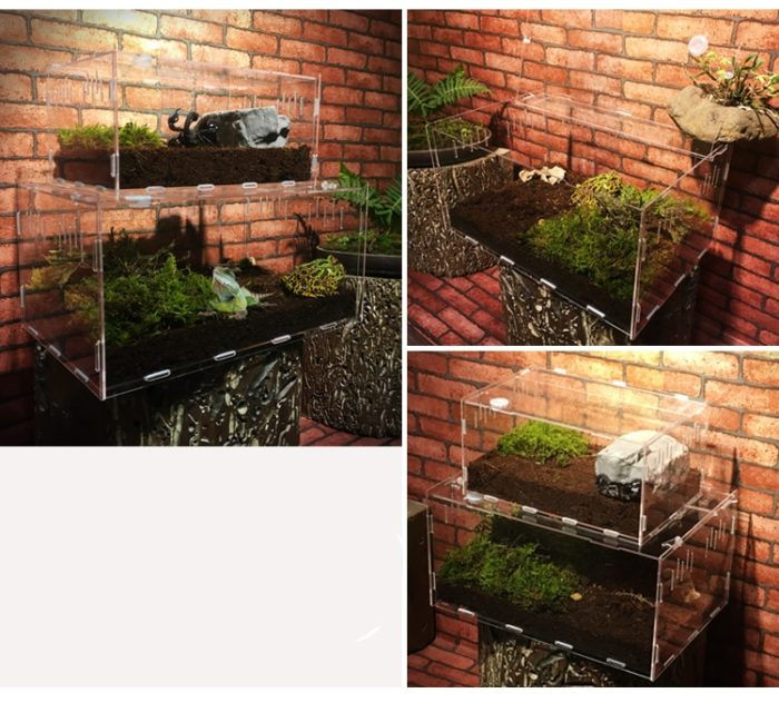 Transparent Acrylic Spider Terrarium