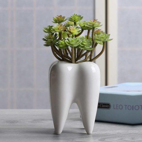 Ceramic Mini Plant Tooth Planter