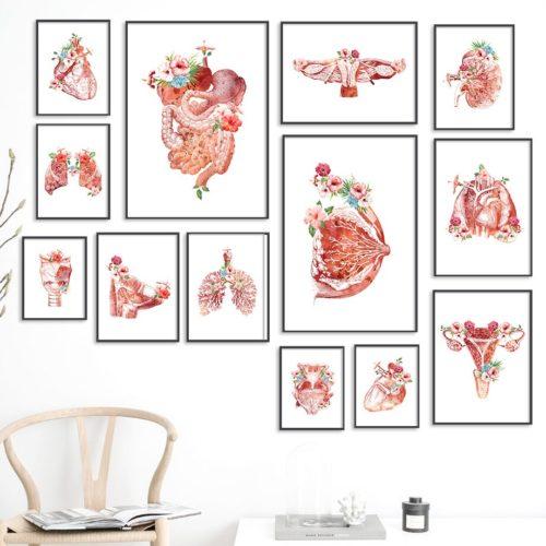 Creative Human Anatomy Wall Art