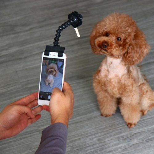 Clip-On Flexible Dog Selfie Stick