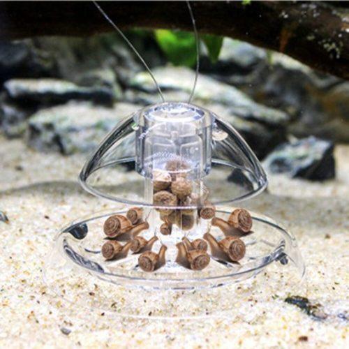Clear Fish Tank Snail Trap