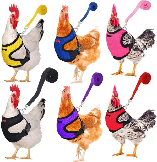 Breathable Chicken Harness and Leash