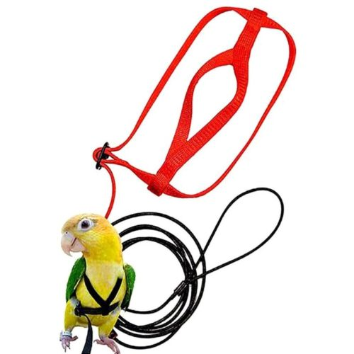 Adjustable Bird Harness and Leash