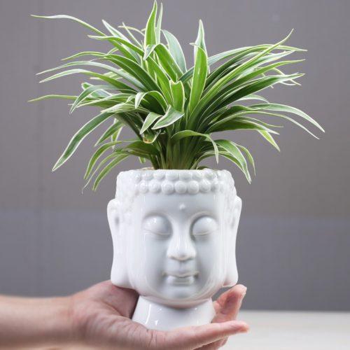 Ceramic White Buddha Head Planter