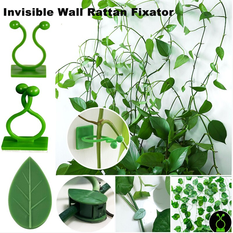 50PCS Plant Bracket Invisible Wall Rattan Clamp Clip Invisible Wall Vine Climbing Sticky Hook Self-Adhesive Plant Fixer Stent
