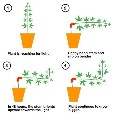 90 Degrees Plastic Plant Benders