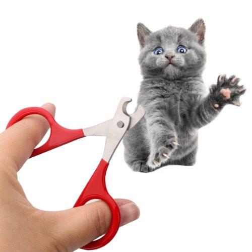 Kitten Nail Cutter Trimming Scissors