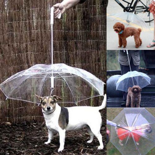 Pet Umbrella with Dog Leash