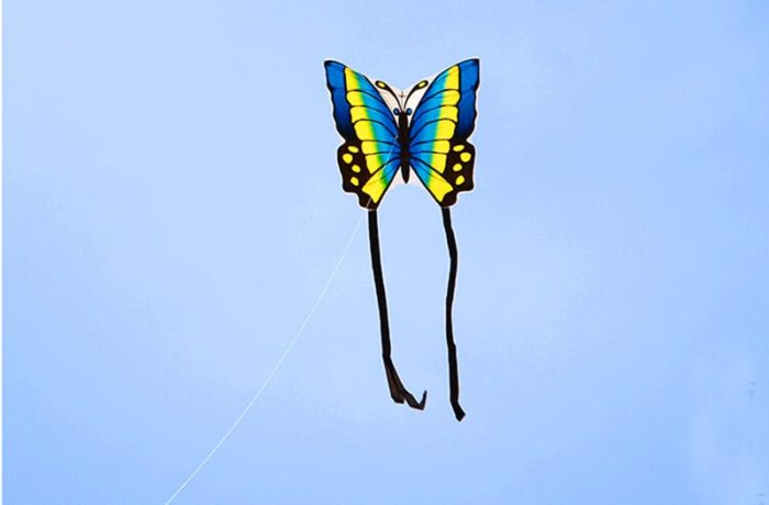 Butterfly Kite Kids Outdoor Flying Toy
